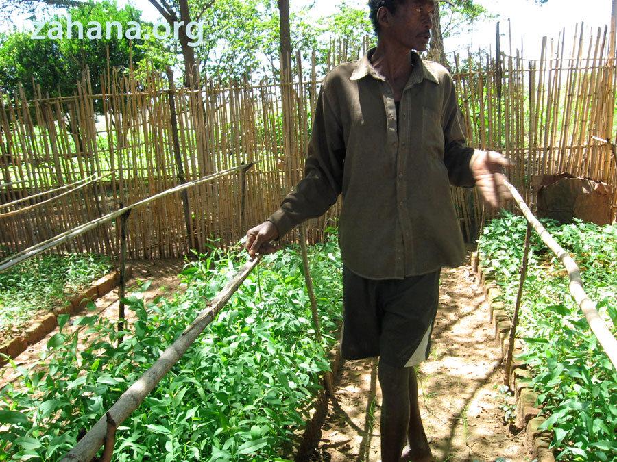 Fiarenana: gardener