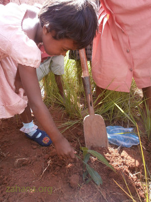 Girl Planting a tree for International Women's Day