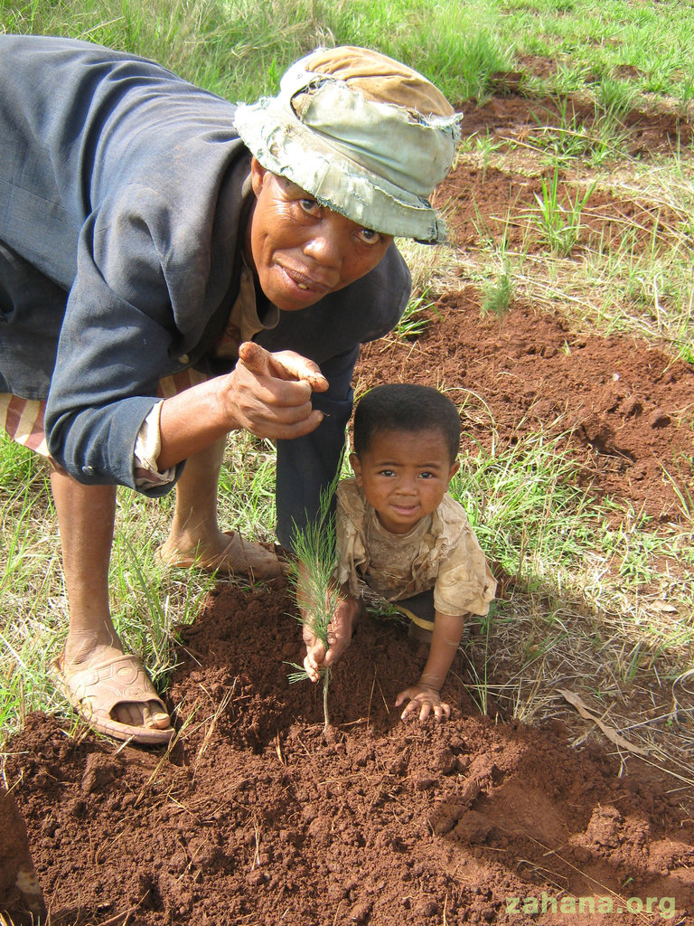 Planting a tree with his mother