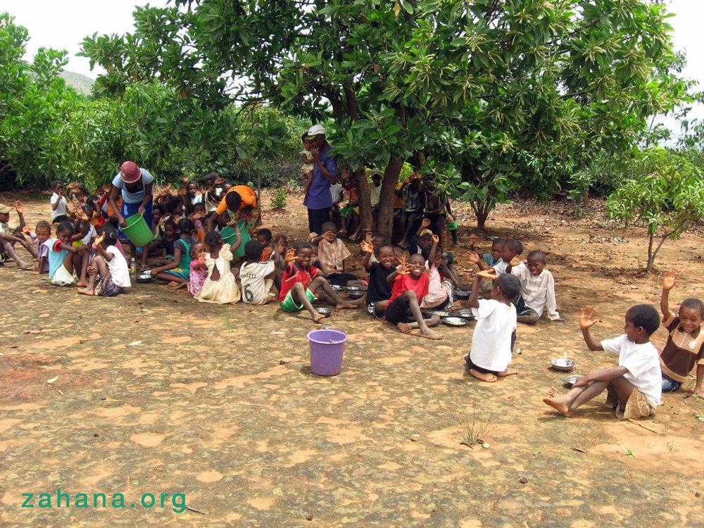 Reforestation worked wonders in the school yard