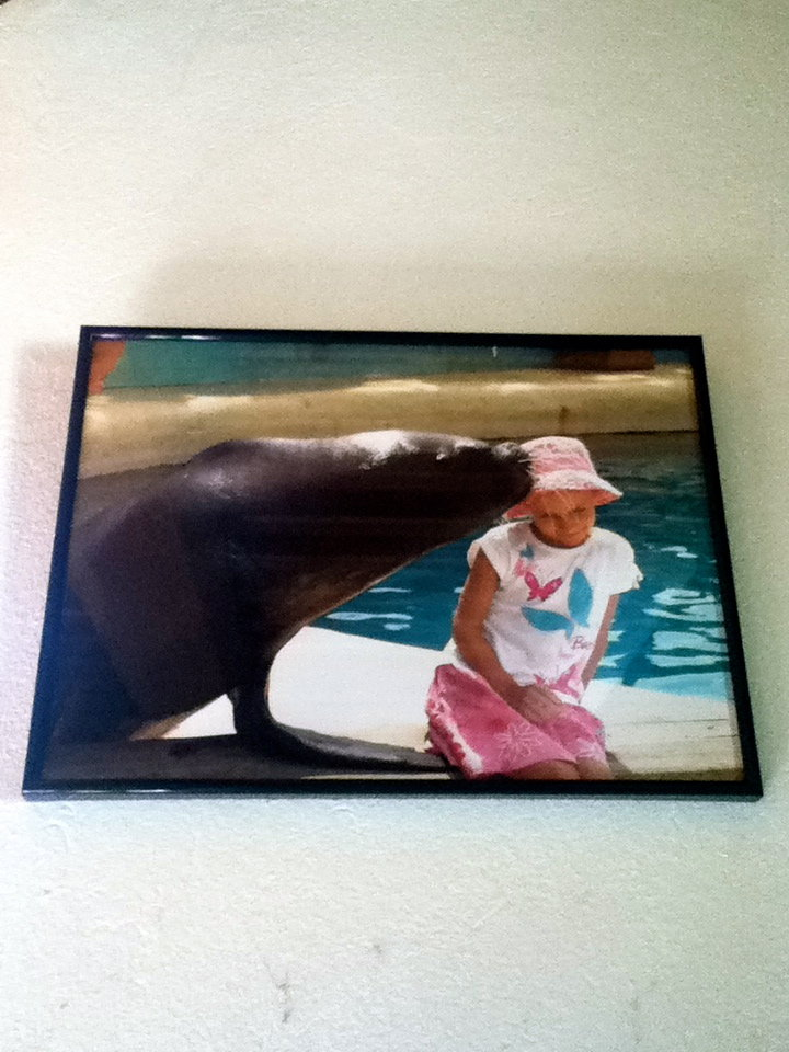 Reves patient gets a kiss at sea world in France!