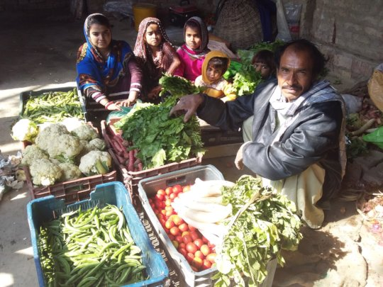 Farmer open the Vegetable Shop at hise house