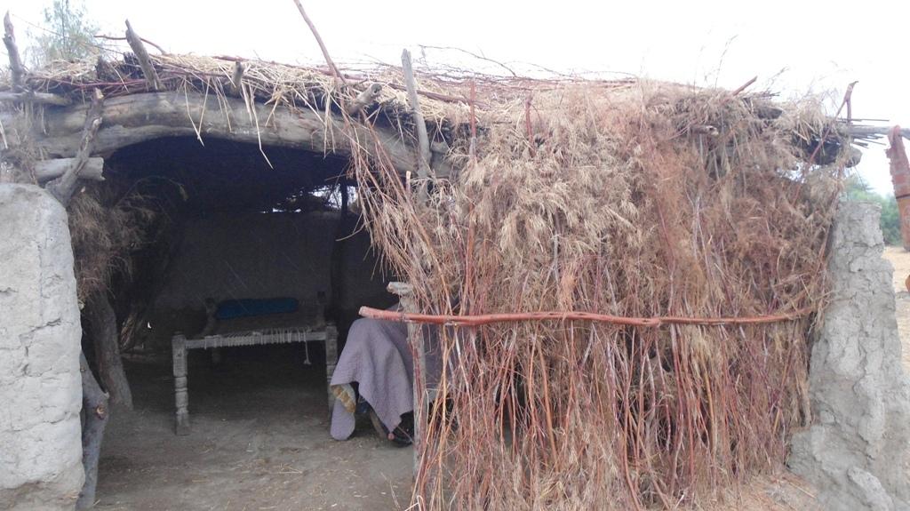 Living standard village Badlo banglani uc Mubark