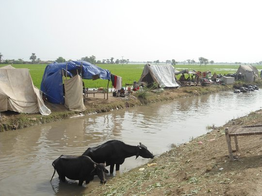 IDPs living on open air and road sides