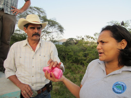 Don Carlos Cruz, current President of the AJAASPIB