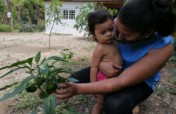 Clean Water for Rural Honduras