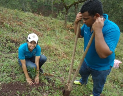 Students planting trees to receive their diploma