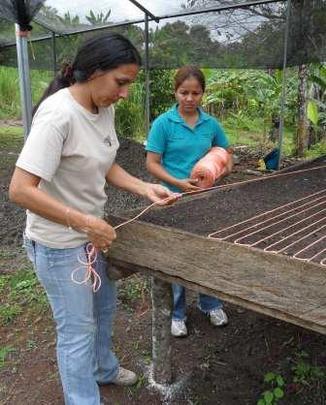 Yaira working to build a tree nursery.