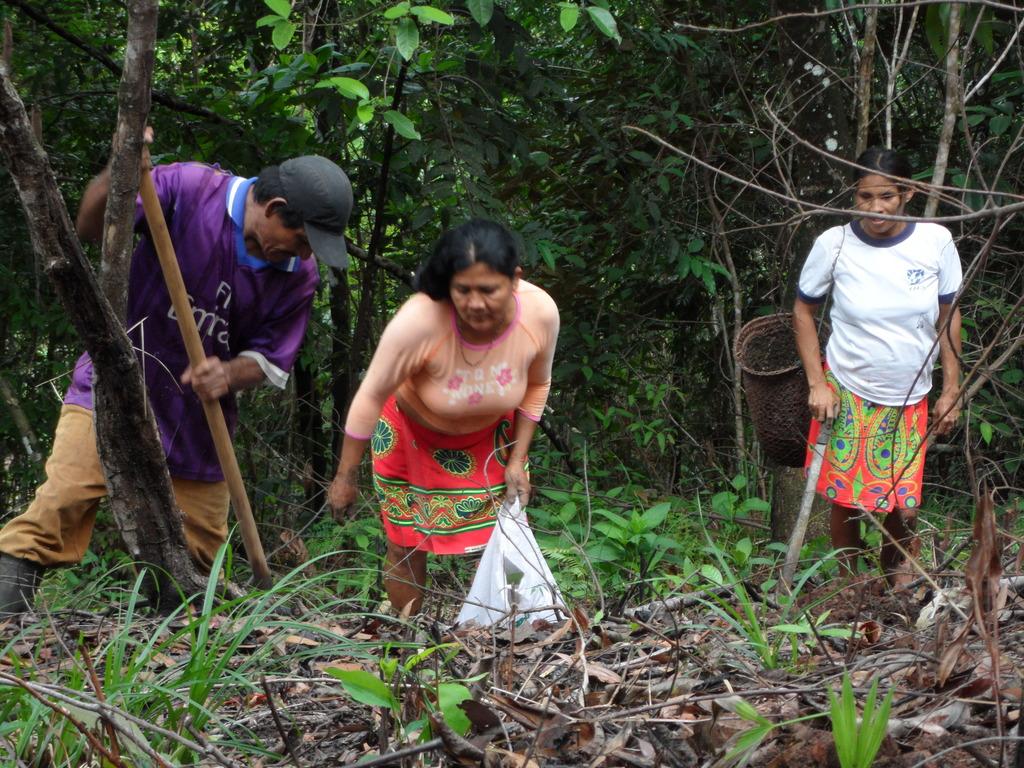Community members reforesting.