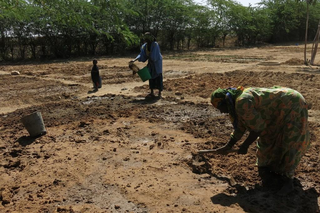 Preparing the ground in a community market garden