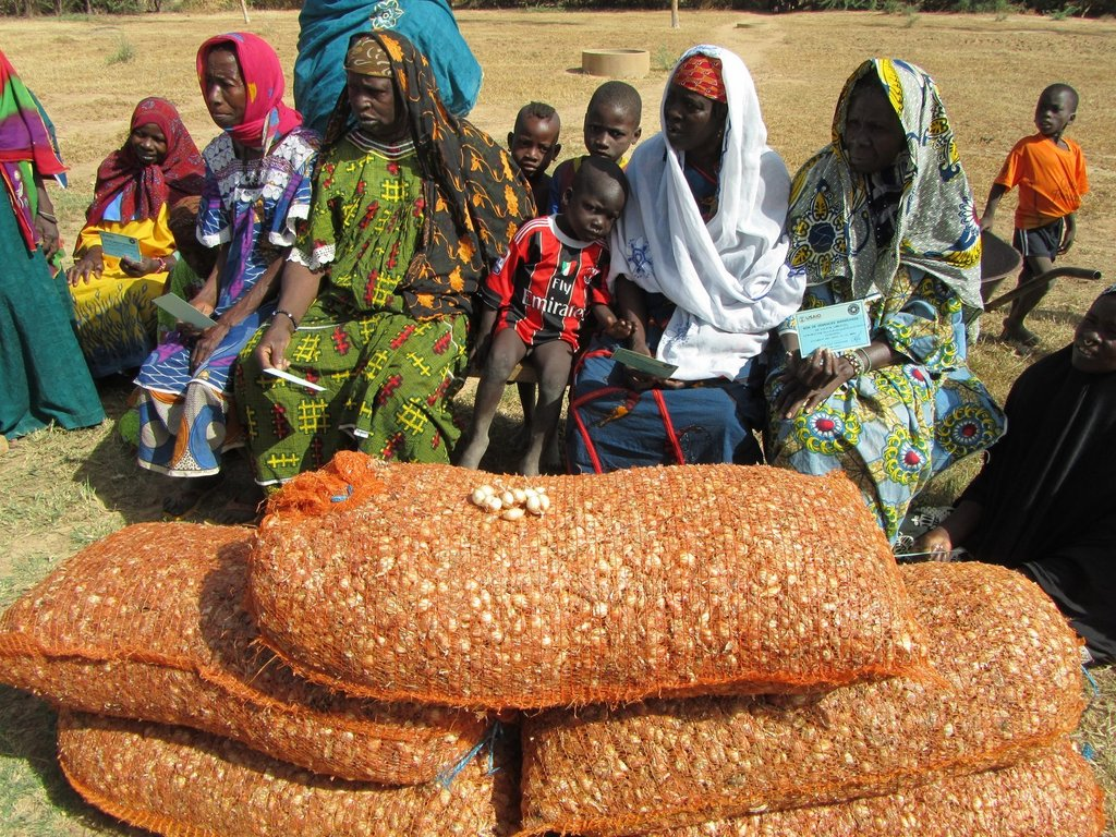Increase food production and security in Mali