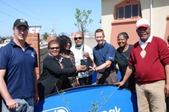 tree planting in Port Elizabeth