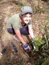 Erynn Stephens of RR planting trees