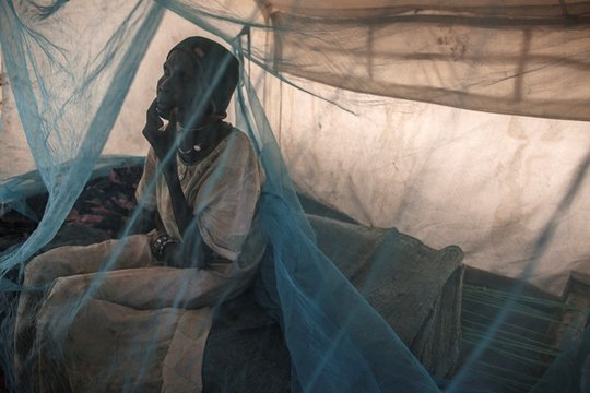 Sudan: Send Emergency Aid to Save Refugees' Lives