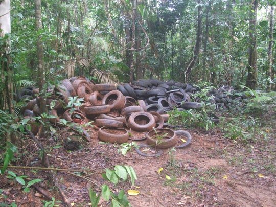 Tyres at Rosewood Road awaiting removal