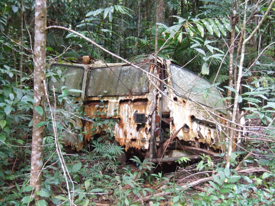 many old cars left to rot in the rainforest