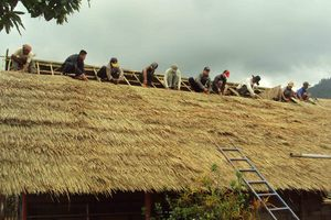 Fixing the thatches onto the new roof