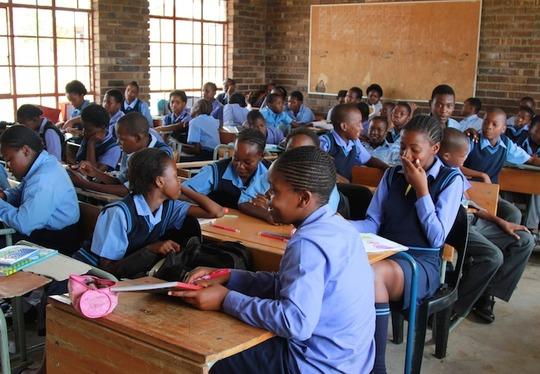 Environmental Education for over 300 Children