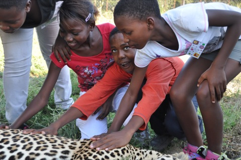 The kids with Shiloweni, our Leopard