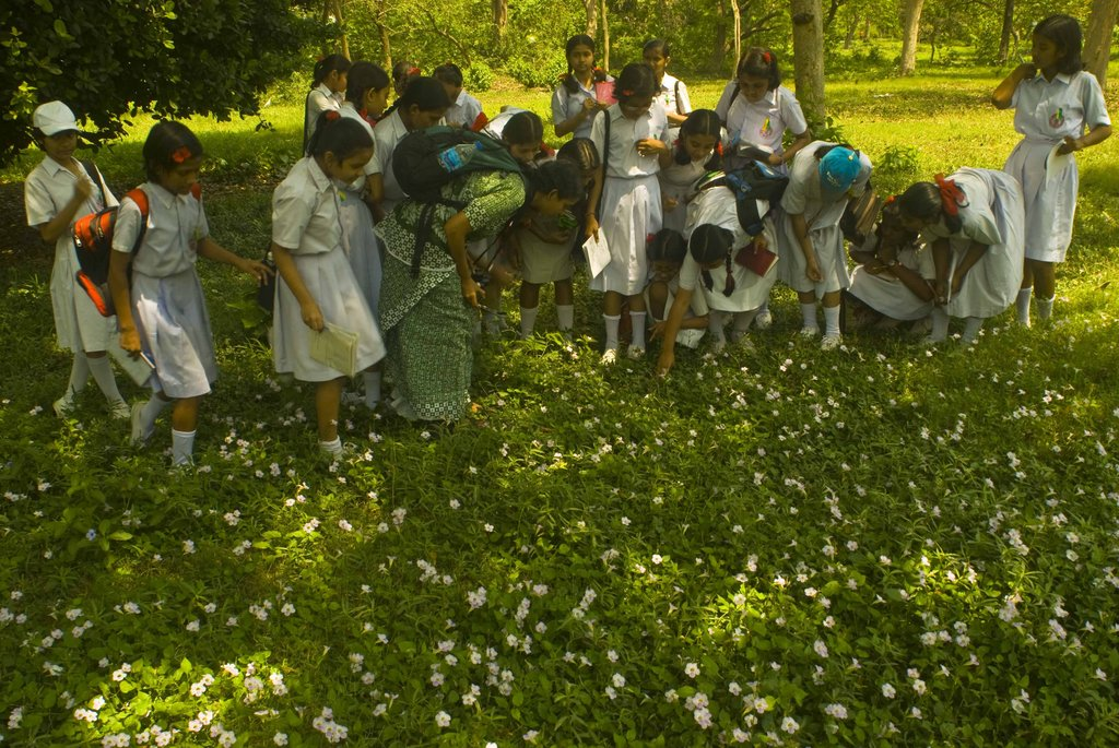 Create 5,000 Youth Nature Leaders in India