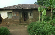 Build Shelter for 3 Elderly Grandmothers in Uganda