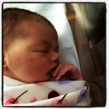 Newborn Harriett