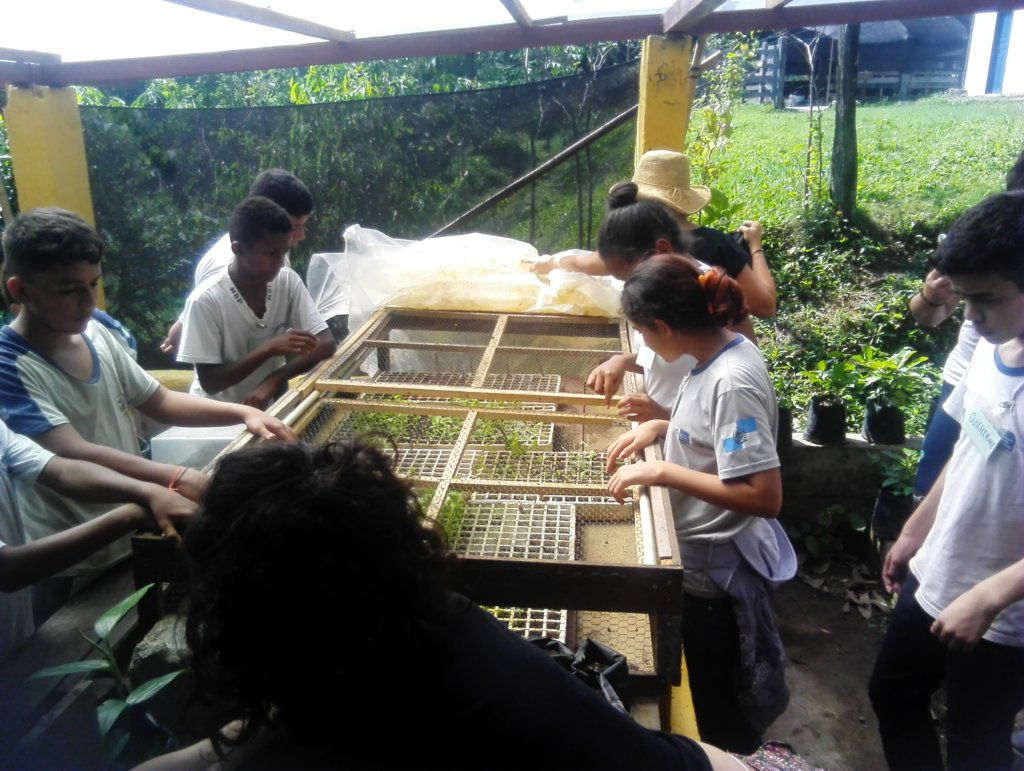 The students planting seeds