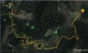 Map of endangered trees on our reforestation trail