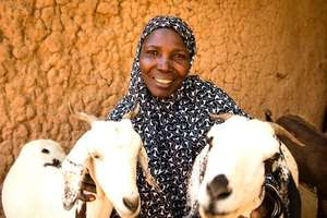 Santou with her goats