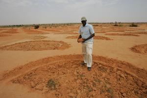 Half-moon shapes: land will retain more rainwater