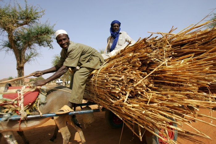 Having hope: A farmer at a market in Niger