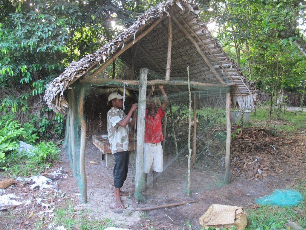 A new insect rearing house for food insects!