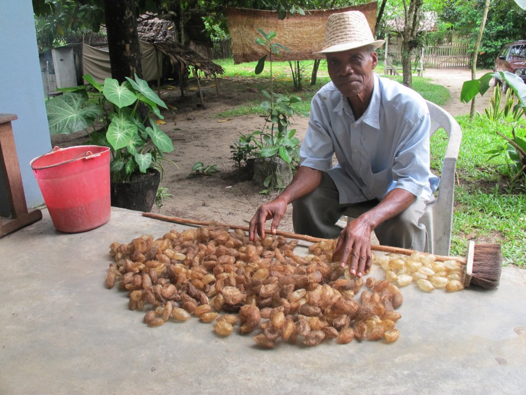 SEPALI farmer with his cocoons