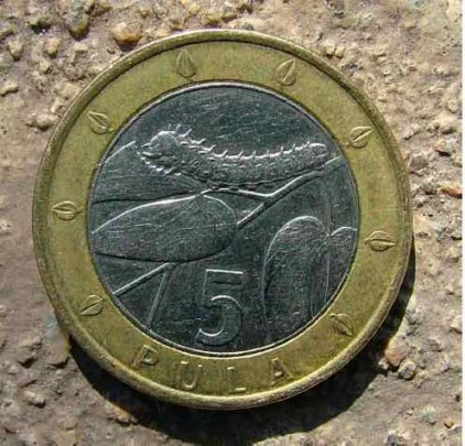 Botswana coin featuring edible caterpillar