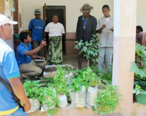Vegetable garden training