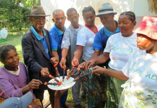 SEPALI Lead Farmers share beetle kabobs