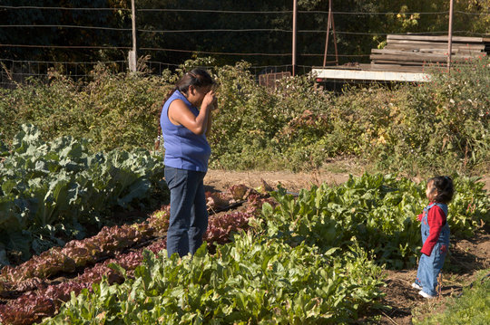 Families See Where Their Produce Comes From