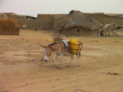 Massaguet district, Chad