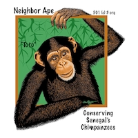 Neighbor Ape