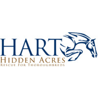 Hidden Acres Rescue for Thoroughbreds
