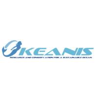 Okeanis