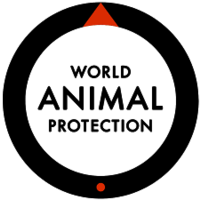 World Animal Protection Fund Netherlands (Formerly WSPA)
