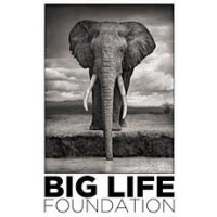 Big Life Foundation USA