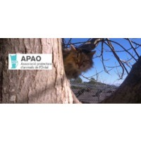 Associacio Protectora d'animals d'Ordal (APAO)