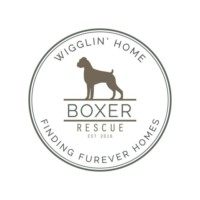 Wigglin' Home Boxer Rescue