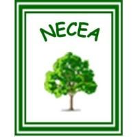 NANGABO ENVIRONMENTAL CONSERVATION AND ECONOMIC EMPOWERMENT (NECEA)