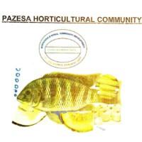 PAZESA hortircultural community