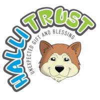Halli Trust - Non-Profit Organisation