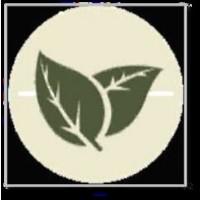 Fundacion Ponferrada Van Stone (FPVI)