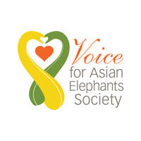 Voice for Asian Elephants Society